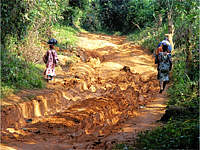 Road in Sierra Leone